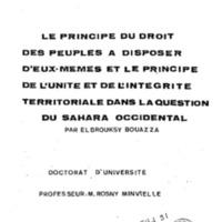 Elbrouksy_THD91.pdf