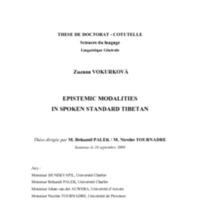 VokurkovaThese.pdf