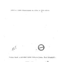 Bouille_THC249.pdf
