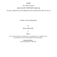 MOAZAMI.pdf