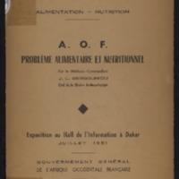 FJDNM091.PDF